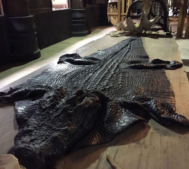 Peau de crocodile